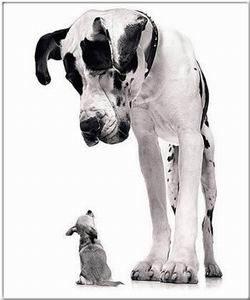 Kép: Barátság 104 képeslap.