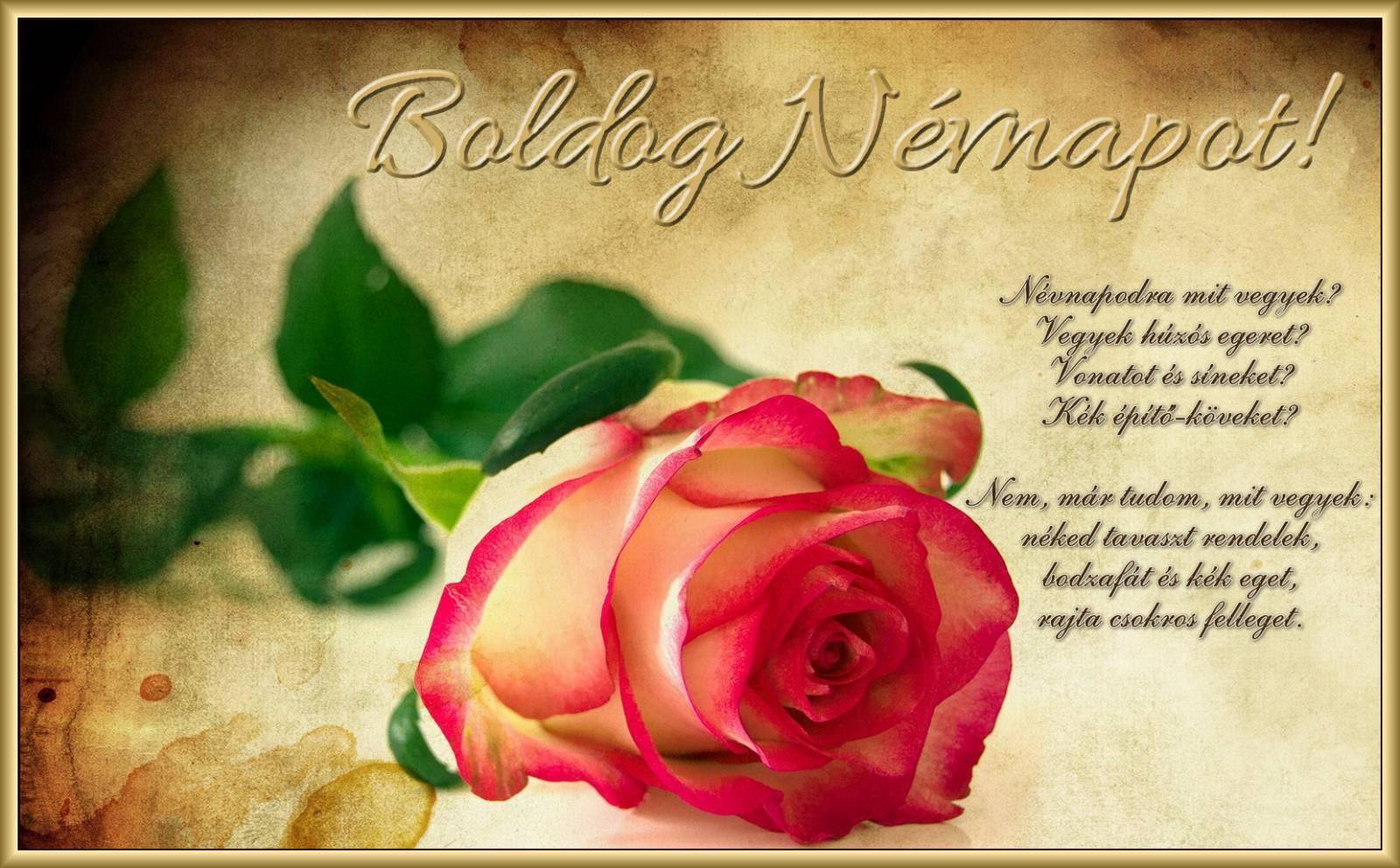 idézetes szülinapi képeslapok Idézetes Születésnapi Képeslap — YinHe438 idézetes szülinapi képeslapok