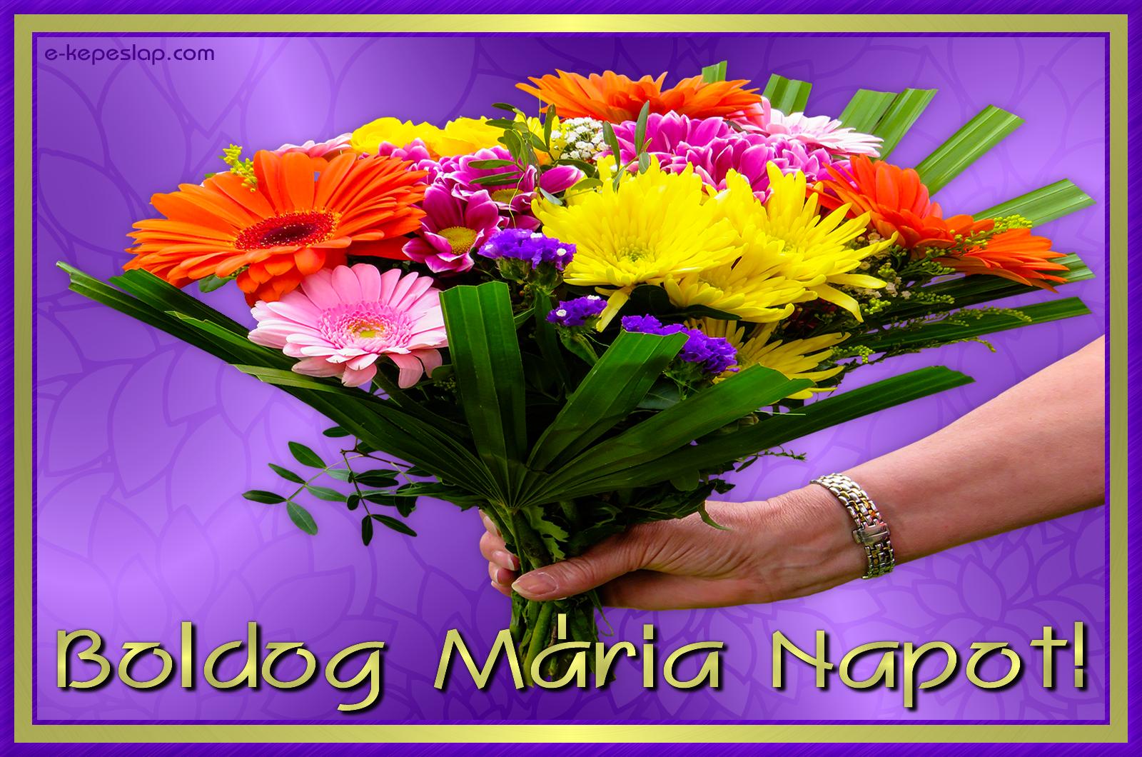 mária névnapi képek Képeslap Mária névnapra   Képeslapküldés   e kepeslap.com mária névnapi képek