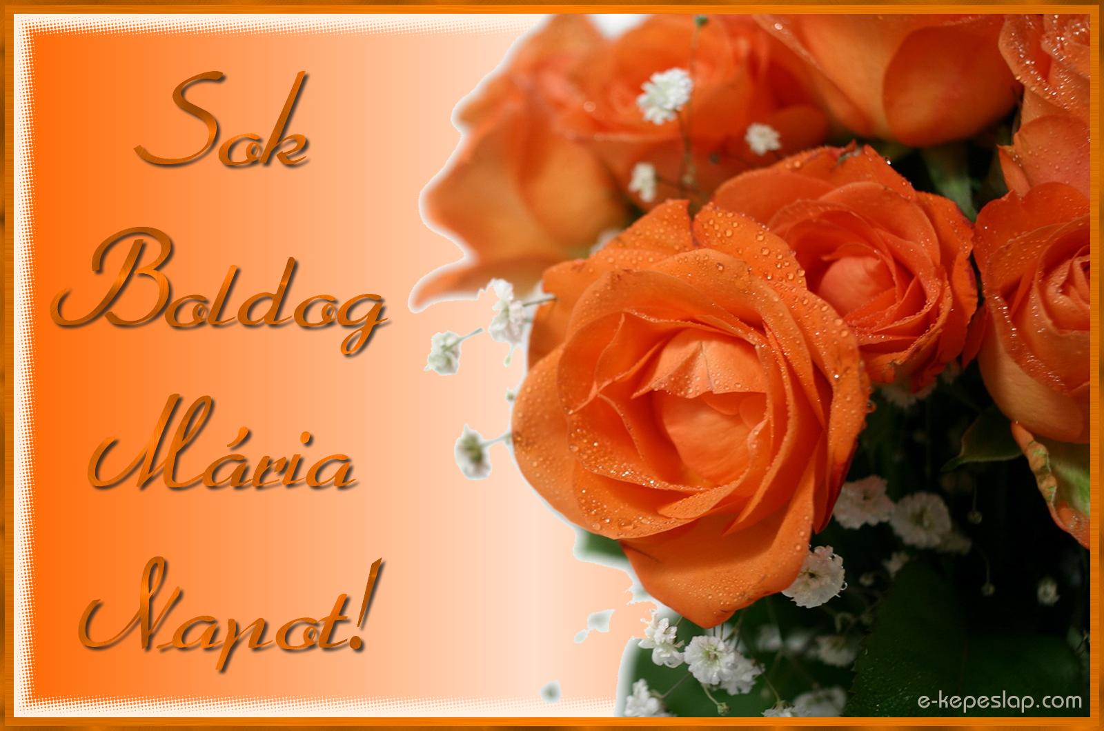 boldog mária napot Boldog Mária napot!   Képeslapküldés   e kepeslap.com boldog mária napot