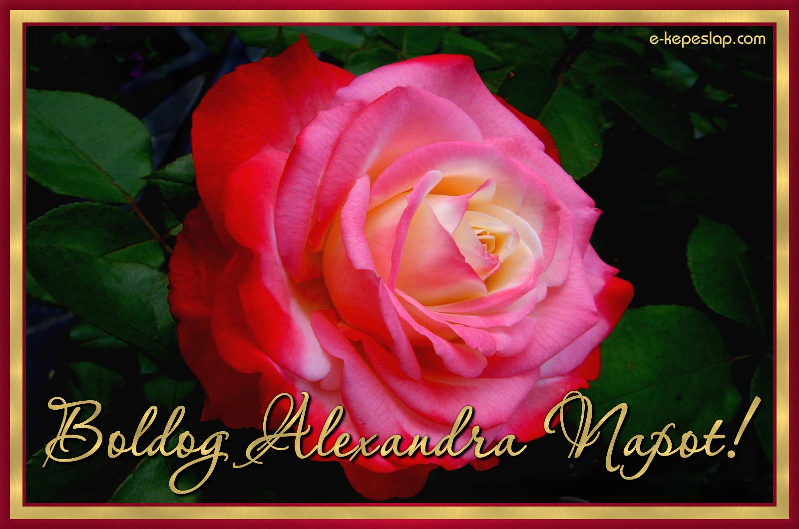 névnapi köszöntő alexandra Alexandra névnapi képeslap   Képeslapküldés   e kepeslap.com névnapi köszöntő alexandra