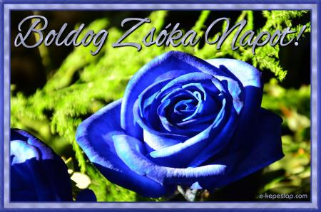 Képeslap Zsóka névnapra