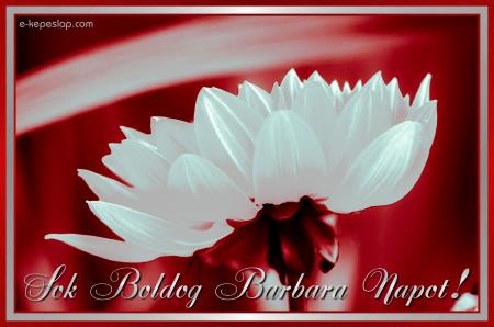 barbara névnapi köszöntő Barbara névnapi képeslap   Képeslapküldés   e kepeslap.com barbara névnapi köszöntő