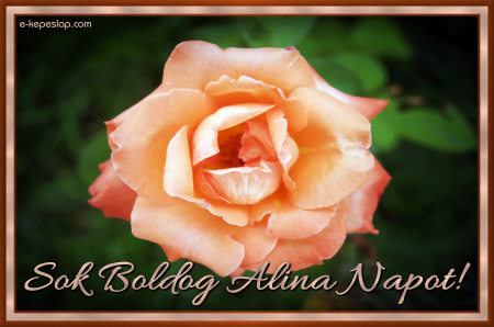 Alina névnapi képeslap