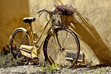 Kerékpár mint virágtartó