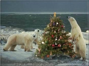 Kép: Karácsony 340 képeslap.