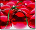 Képeslapküldés: Karácsony 1145 képeslap.