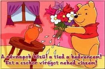 Ezt a csokor virágot, neked viszem. Névnapi Micimackós képeslap.