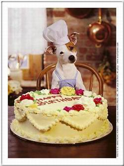 Kép: Születésnap 299 képeslap.