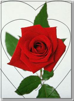 Kép: Valentin nap 953 képeslap.