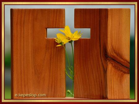 Kereszt sárga virággal, keresztény vallásos képeslap.